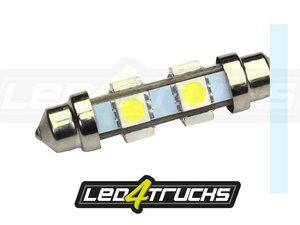 XENON WIT - 6xSMD LED 24-28V - FESTOON